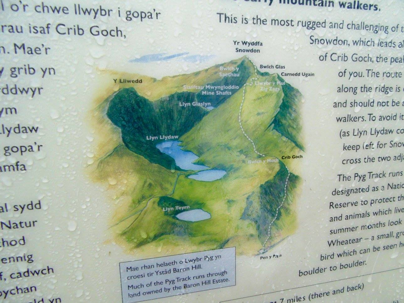 A map showing paths up to the summit of Snowdon