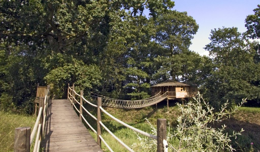 Bensfield-Tree-House-1-1024x768
