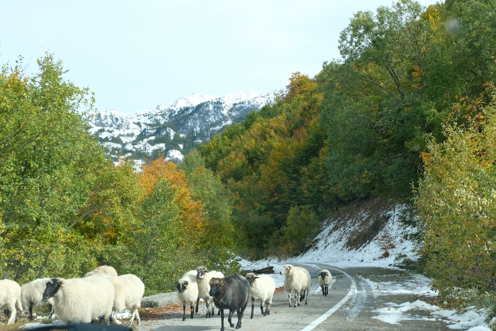 Rural driving in the Mountains of Montenegro